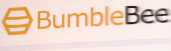 BumbleBee Childcare Management Software Global HQ