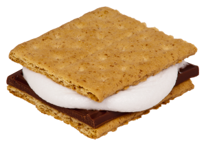Summer camp management software that's easy and delicious as smores